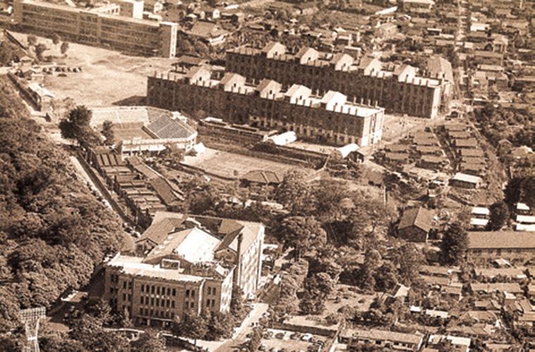 1956 年撮影の神宮外苑
